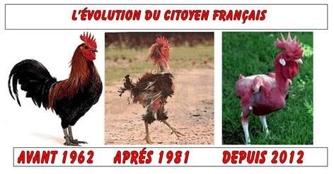 L'EVOLUTION DU CITOYEN FRANCAIS