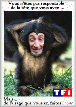 Sarkozy tete de singe