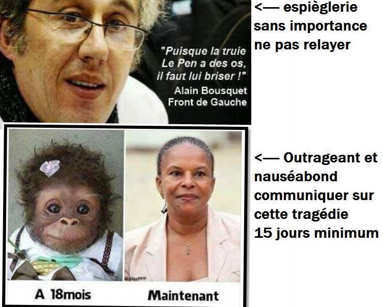 Truie Le Pen - Guenon Taubira