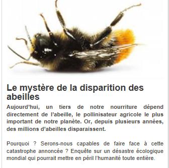 mystere-de-la-mort-des-abeilles