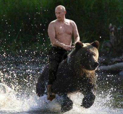 Poutine-et-l-ours