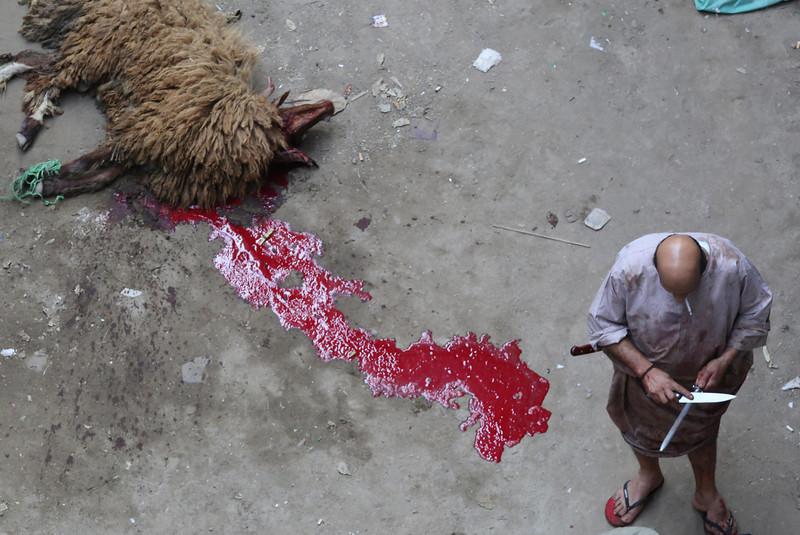 APTOPIX Middle East Egypt Eid al Adha