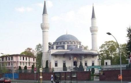 Mosqueeberlin
