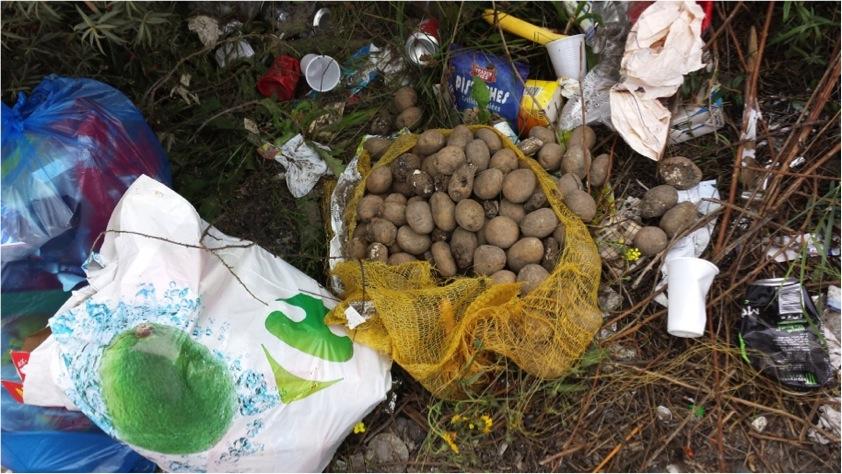 Les sacs de pommes de terre sont jetés avec leur contenu