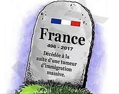 france-decedee-tumeur-immigration-massive