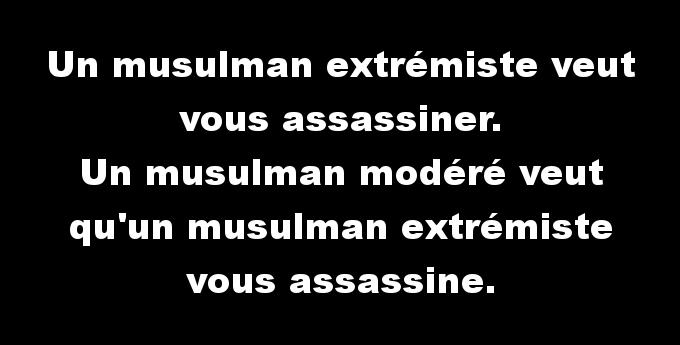 """Les """"musulmans modérés"""" montrent leur vrai visage : celui de l'islam"""