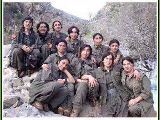 av combattantes kurdes