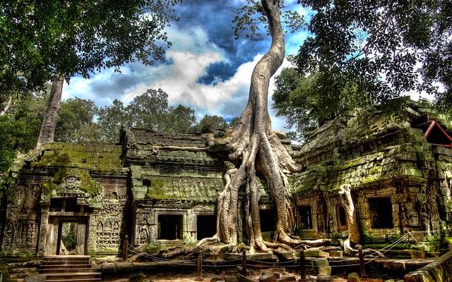TempleDeTaProhm_Angkor1