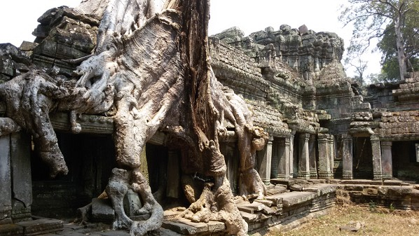 TempleDeTaProhm_Angkor3