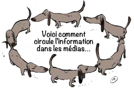 Mediaschiens