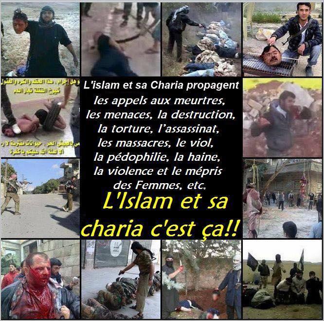 l-islam-c-est-ca