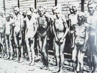 auschwitz20prisoners.jpg