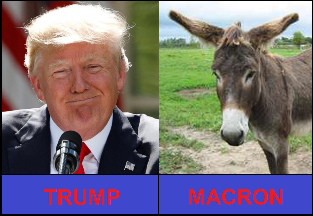 https://ripostelaique.com/wp-content/uploads/2017/06/Trump-Macron.png