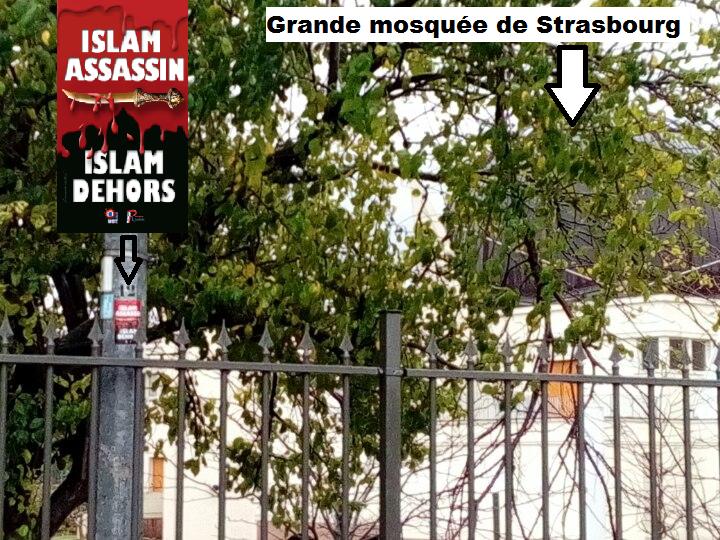 islam dehors a strasbourg juste c t de la grande mosqu e riposte la que. Black Bedroom Furniture Sets. Home Design Ideas