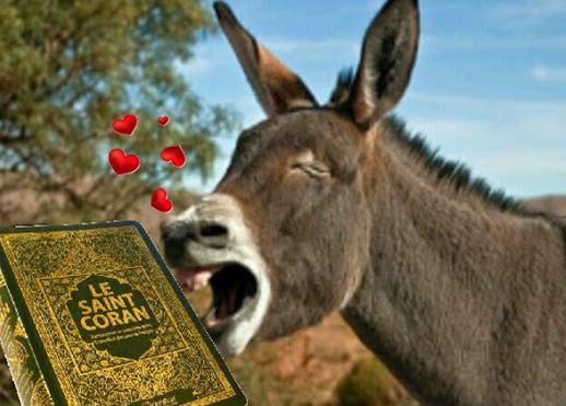 Exclusif : les 43 erreurs scientifiques du Coran