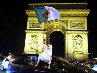 Algerien-champs.jpg