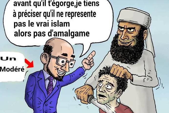 Noha Alzabraqan pointe la mascarade des musulmans modérés
