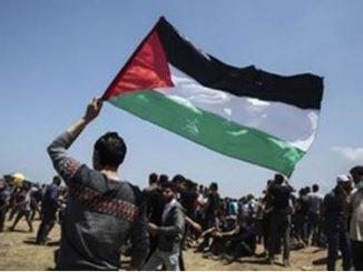Palestine5.jpg