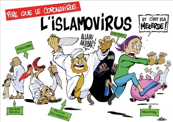 Virus et islam : incertitudes et convictions