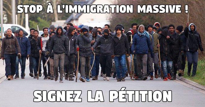 Il faut revenir à l'essentiel: identité nationale, immigration, sécurité