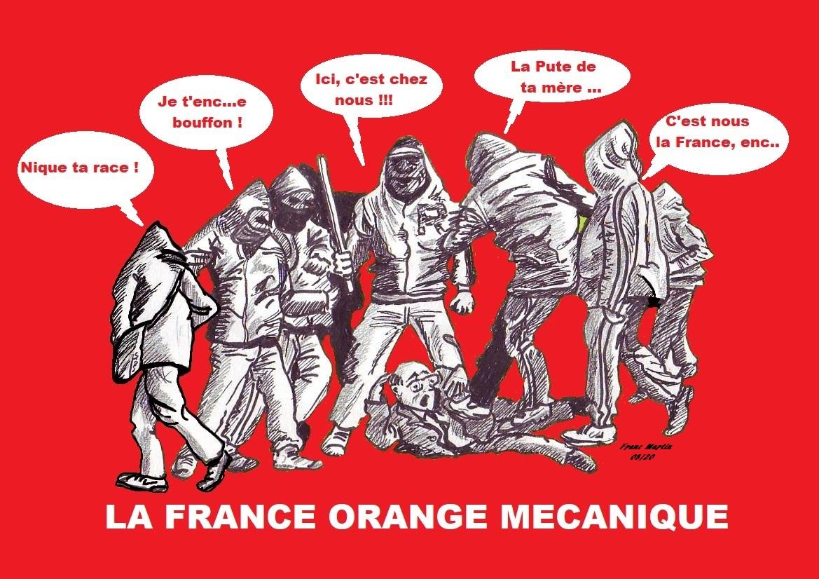 À cause de sa générosité, la France s'est faite la meilleure alliée de ses ennemis