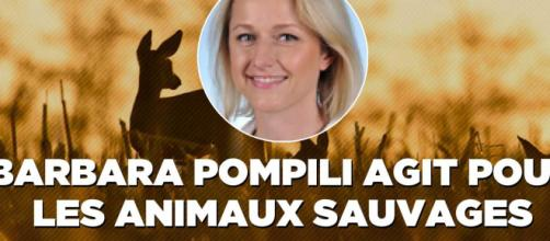 Et si on enfermait Pompili et les écolo-dingos dans des zoos ?