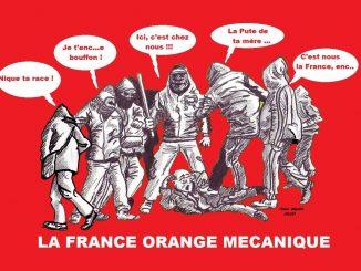 Franceorangemecanique5.jpg