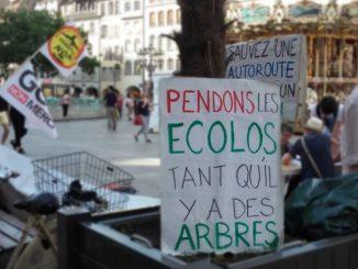 Ecolospendons.jpg