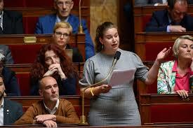 """Et le député Henriet traita l'Insoumise Mathilde Panot de """"poissonnière"""" !"""