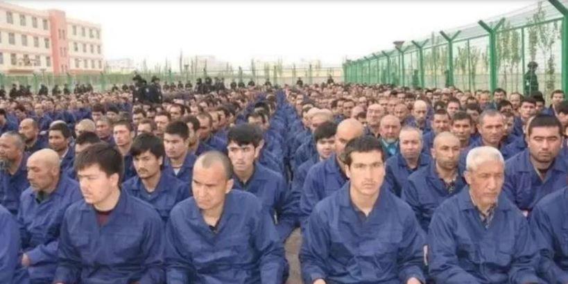 Gangrenés par l'islam, les voilà maintenant au secours des Ouïghours !