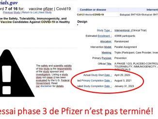 essai-pfizer-dates-clefs.jpg