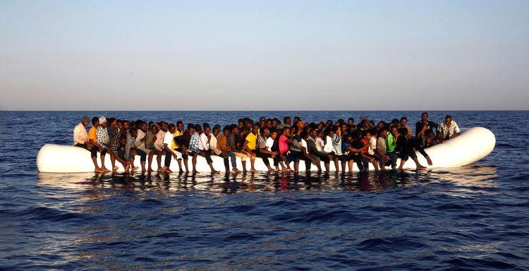 Les deux fléaux français : l'immigration africaine et la vaccination génocidaire
