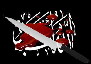 Mehmet, le va-t-en-guerre islamique qui voulait tuer du flic