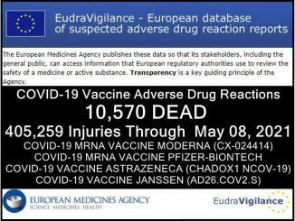 eudravigilance-5.8-14-MAI.jpg