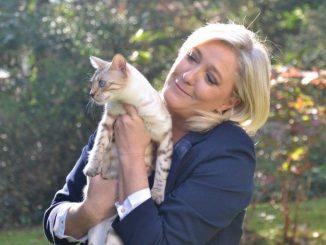 marine-le-pen-sa-belle-histoire-d-amour-avec-les-chats.jpg