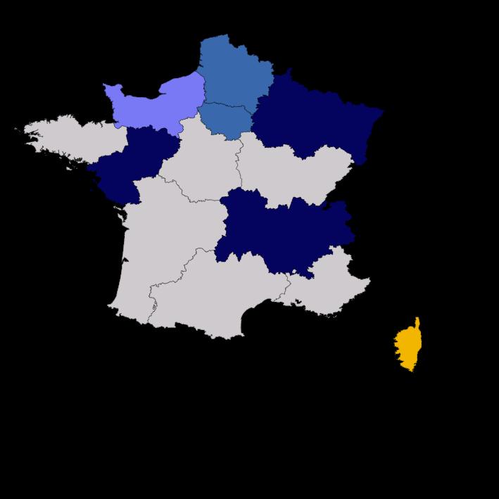 Régionales : le RN donné en tête dans six régions