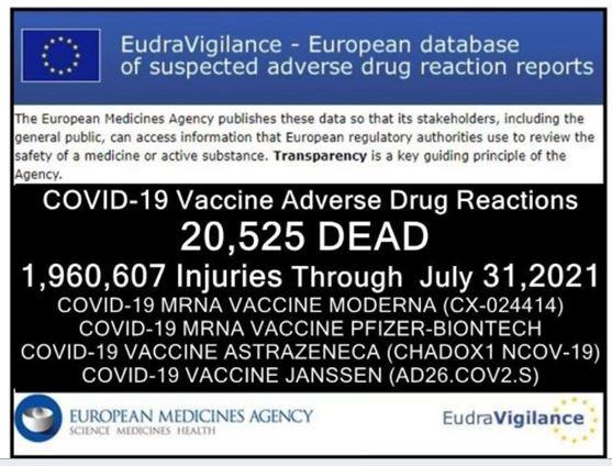 Le massacre continue : 20 595 décès dans l'UE, et toujours ce silence