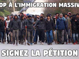 stop-a-limmigration-massive.jpg